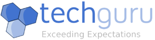 TechGuru, Inc